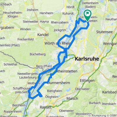 Linkenheim - Karlsruhe - Pamina-Rheinauen-Rundtour 3