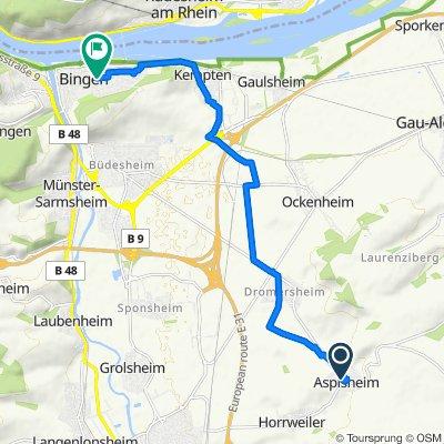 L414 16, Aspisheim nach Prof.-Höpke-Straße 6, Bingen am Rhein