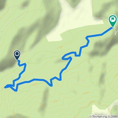 15 Baraj Vidraru - Molivis - Poienile Valsanului  ( pe drumul spre partie)