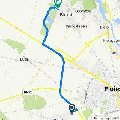 Traseul către DJ102, Păuleşti