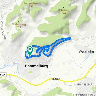 Wanderung über die nördlichen Hammelburger Höhen.