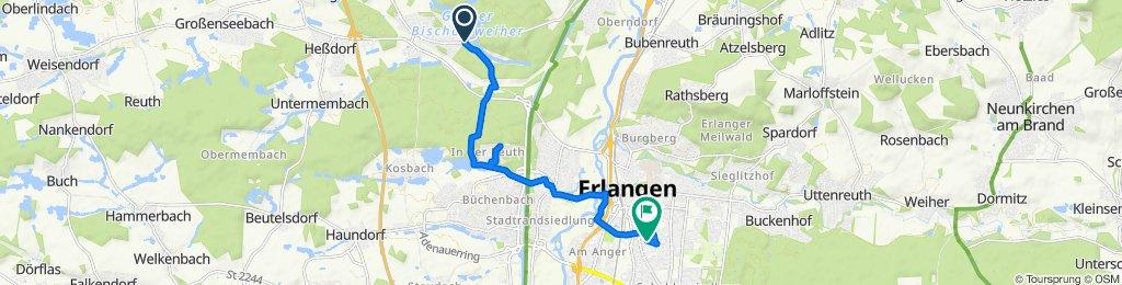 Naturbadstraße 79, Erlangen to Brahmsstraße 21, Erlangen