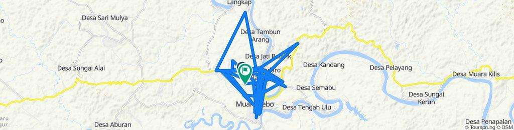 Unnamed Road, Tebo Tengah to Bedaro Rampak, Tebo Tengah