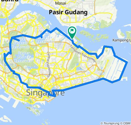 Punggol-Changi Coast Road-East Coast Park-Marina Barrage-Orchard Road-Upper Bukit Timah- Mandai-Punggol