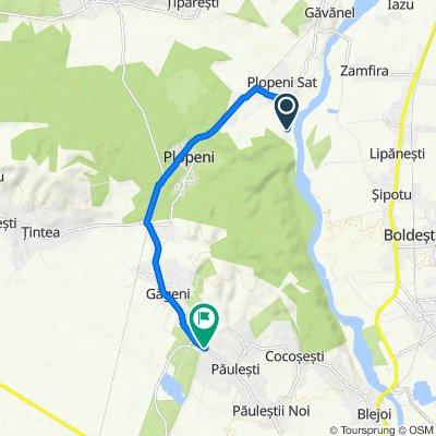 Route to DJ102, Păuleşti