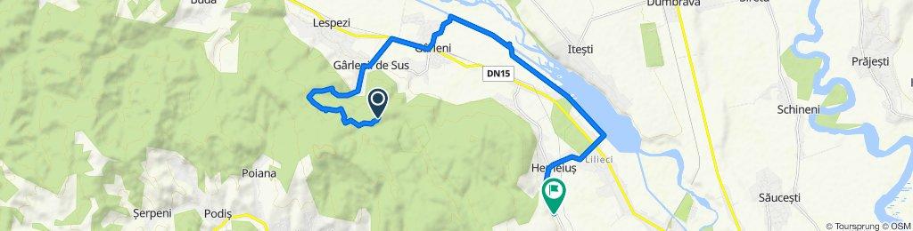 Restful route in heme