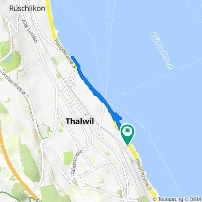 Seestrasse 88, Thalwil nach Zehntenhofweg 1A, Thalwil