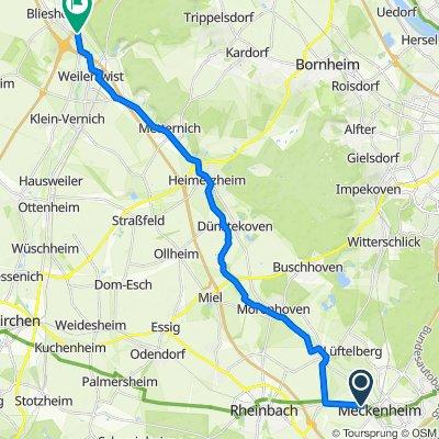 Radtour entlang der Swistbachmündung