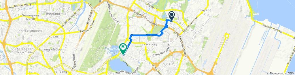 Pasir Ris Drive 6 443, Singapore to Tampines Avenue 1 51, Singapore