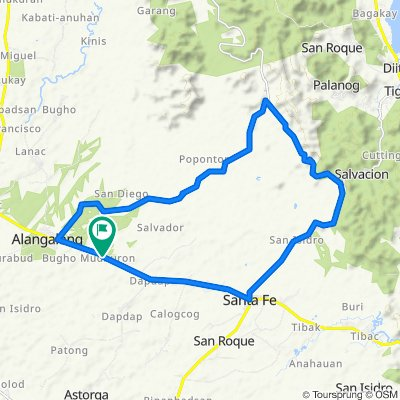 Palo-Carigara-Ormoc Road, Alangalang to Palo-Carigara-Ormoc Road, Alangalang