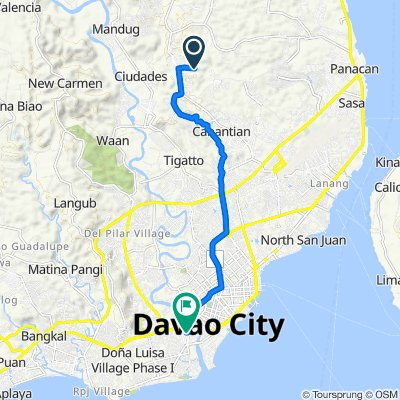 Unnamed Road, Davao City to Guillermo E. Torres Street 129, Davao City