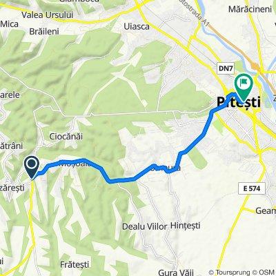 DN67B 95, Moșoaia to Strada Victoriei 10, Pitești