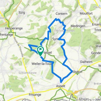 Pistes_VTT : Weiler-la-Tour