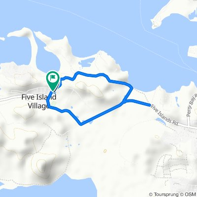 UWI 5 Islands Virtual 5km