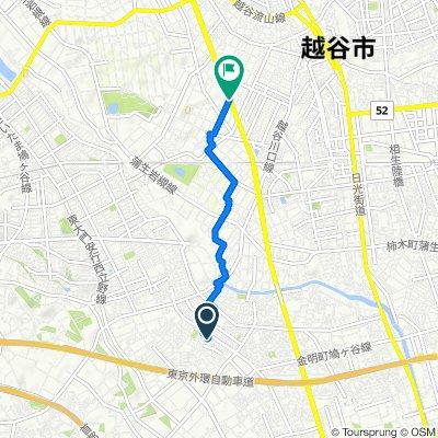 396, Angyokichizo, Kawaguchi-Shi to Nikko-kaido Avenue, Koshigaya-Shi