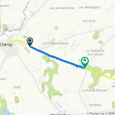 De Rue Thorailler, Chéroy à D81, Dollot
