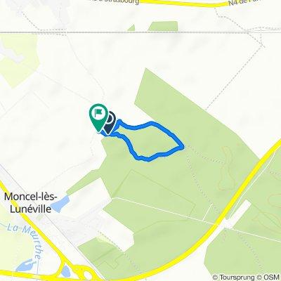 De La Fourasse, Lunéville à La Fourasse, Lunéville
