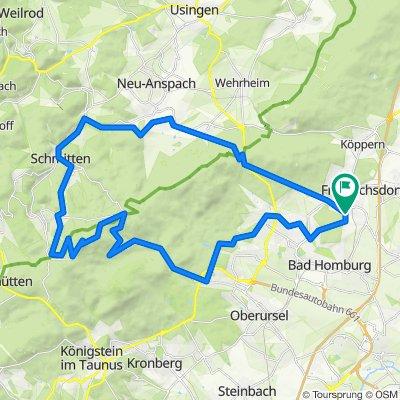 Feldberg über Saalburg, Obernhain, Dorfweil, Schmitten (CX)