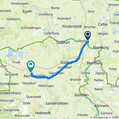 Route nach Walter-Dammköhler-Straße 8, Aschersleben