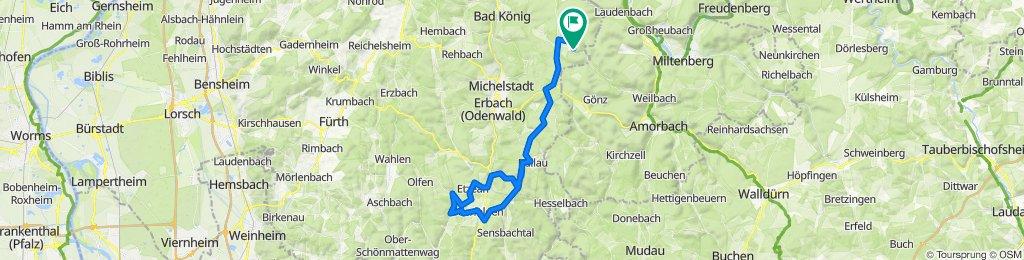 Vielbrunn - Hetzbach - Falken-Gesäß - Beerfelden - Reußenkreuz - Würzberg - Eulbach