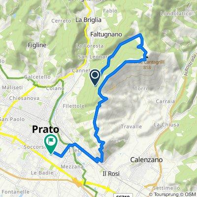 Calvana Tutta su Prato
