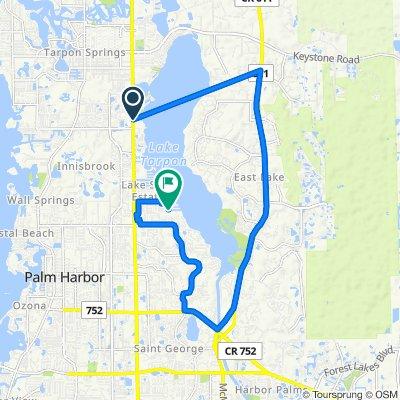38799 US-19 N, Tarpon Springs to 3203 Marion Dr, Palm Harbor