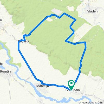 Gheboaia Cycling