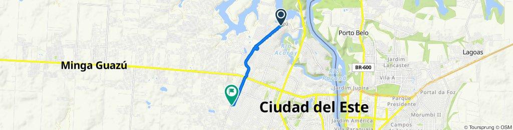 De Avenida República del Perú, Ciudad del Este a Ciudad del Este