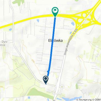 Koncpecja szlaku Elizówka (żółty)