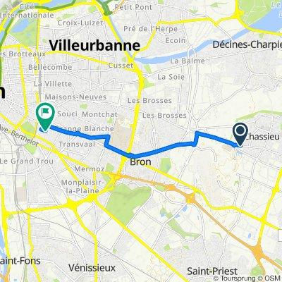 De Route de Lyon, Chassieu à 4 Rue Saint-Nestor, Lyon