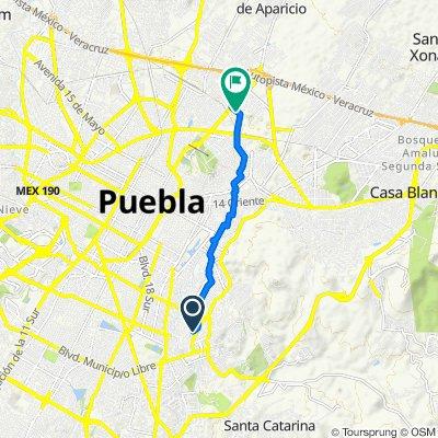 De Avenida 42 Sur 310, Heroica Puebla de Zaragoza a Corredor Industrial la Ciénega, Heroica Puebla de Zaragoza