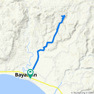 Route from National Highway, Bayawan City