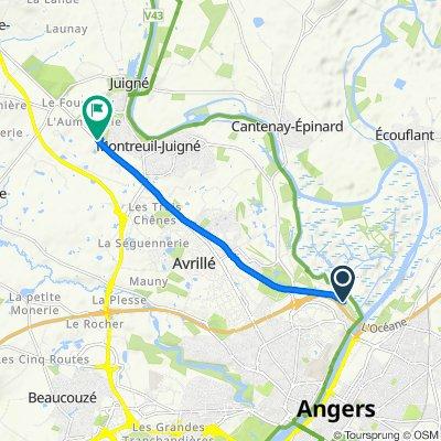 Chemin Bas d'Épinard, Angers to 1 Rue Paul Héroult, Montreuil-Juigné
