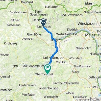 1.Bacharach-- Alsenz 50 Km