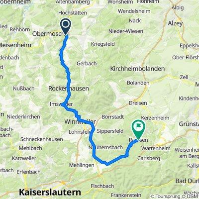 2. Alsenz--Ramsen  50 Km