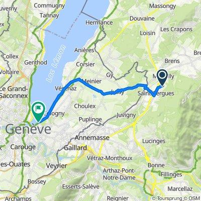 De 190 Route de Boringes, Saint-Cergues à Quai Gustave-Ador, Genève