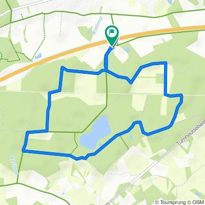 Vosselaar - Grotenhoutbos 6.3km