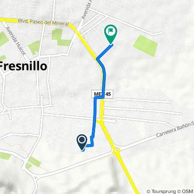 De Calle Maravillas 4-15, Fresnillo a Gardenias 64, Fresnillo