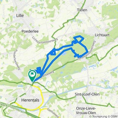 MTB Herentals, Kasterlee • rood - groene lus