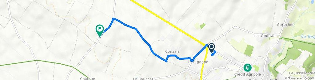 De 25 Rue des Acacias, Celles-sur-Belle à D304, Thorigné