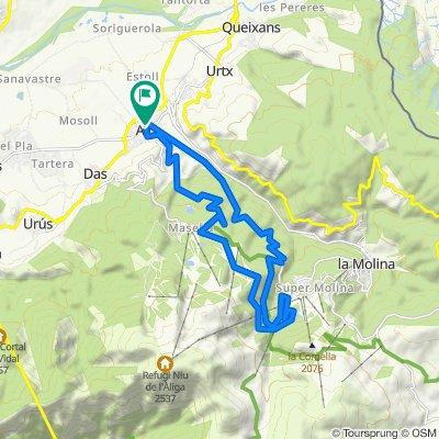 Cursa Alp curta