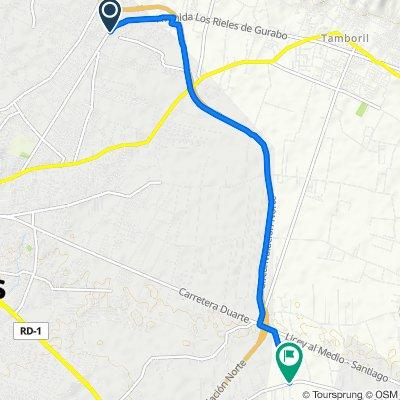 De Carretera Los Rieles, Santiago De Los Caballeros a Carretera Las Palomas, Licey al Medio
