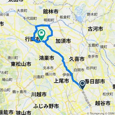 岩槻・緑のヘルシーロード・羽生・行田 2020/11/29