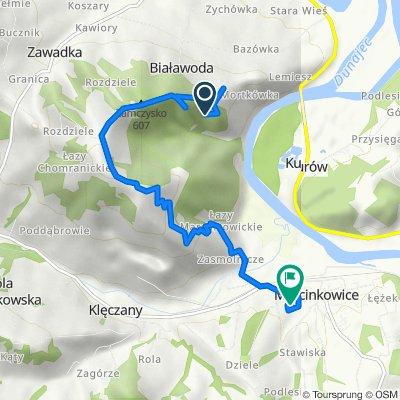 Trasa do Marcinkowice 195, Chełmiec