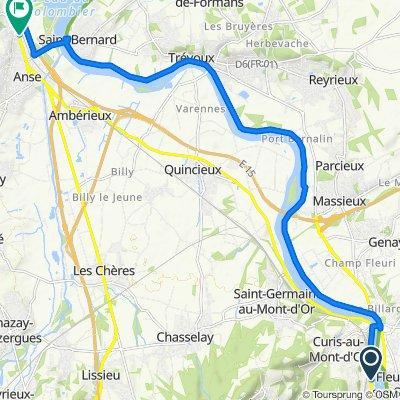 De 9 Avenue Henri Barbusse, Albigny-sur-Saône à 27 Chemin des Molaizes, Anse