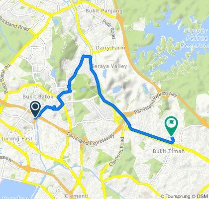 Toh Guan Road, Jurong to 776 Dunearn Road, Bukit Timah
