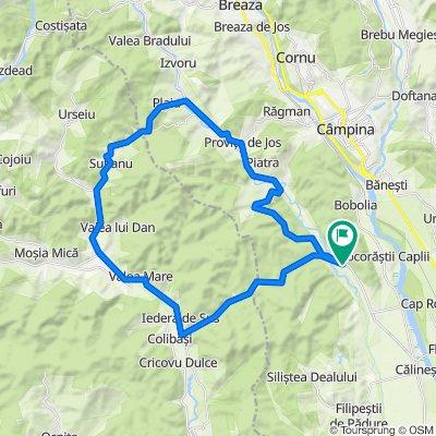 Traseu Satul Banului - Provita
