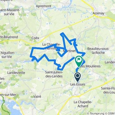 De Rue des Pins 22, Saint-Georges-de-Pointindoux à Unnamed Road, Martinet