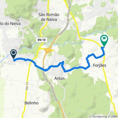 De Avenida de Casaldelo 50–72, Antas a Rua Padre Avelino S. Ribeiro 221, Forjães