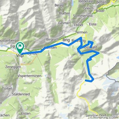 [Visp_000] Col du Simplon et Rosswald.